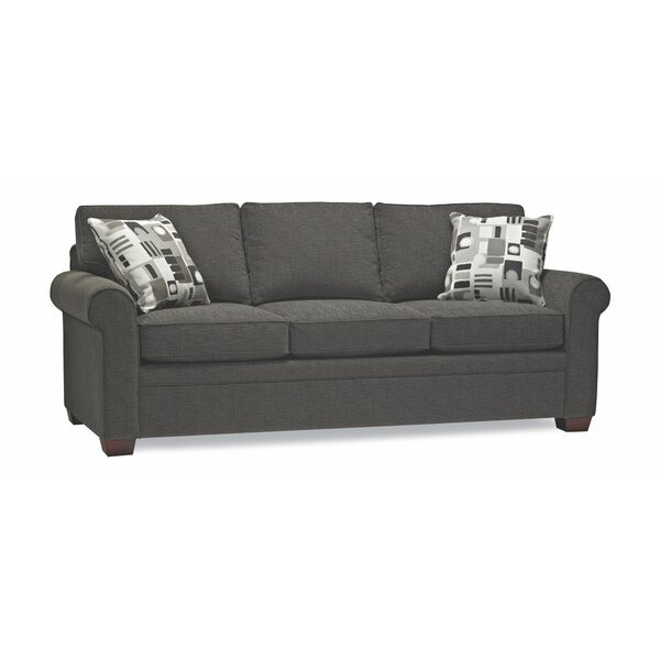 Mcmeans Queen Sleeper Sofa by Red Barrel Studio