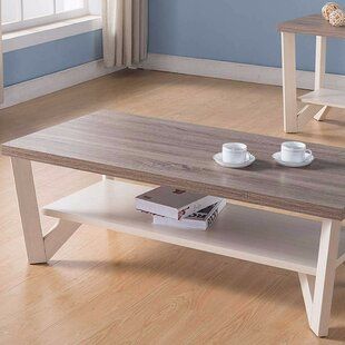 Ald Stylish Center Display Coffee Table with Storage ByAugust Grove