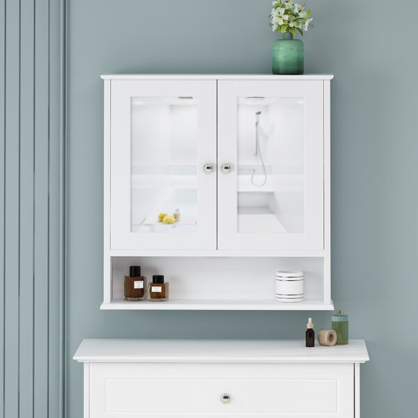 Galen Surface Mount Framed 2 Door Medicine Cabinet withShelves