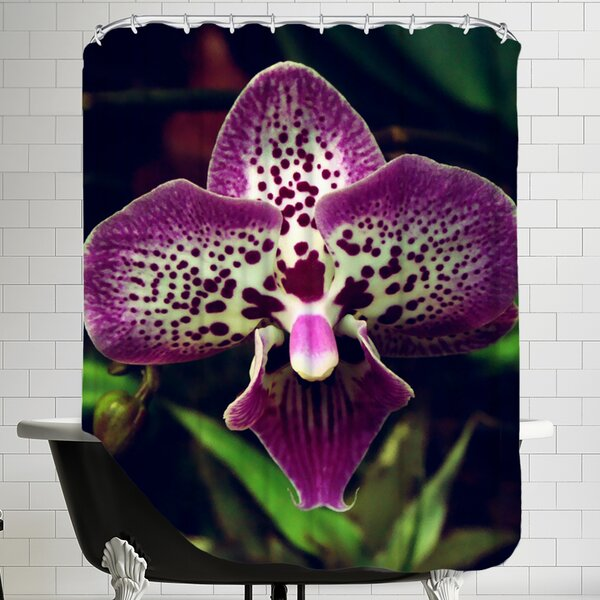 Orchid Flower Shower Curtain by East Urban Home