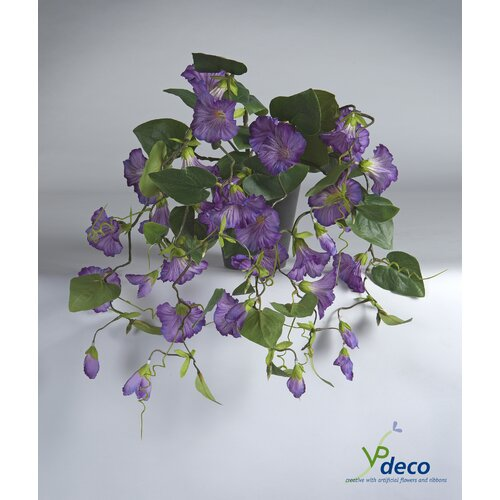 Petunia Desktop Flowering Plant in Pot Bay Isle Home