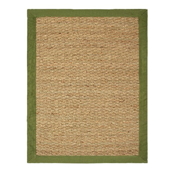 Pine Hand-Woven Beige/Sage Indoor/Outdoor Area Rug by Bay Isle Home
