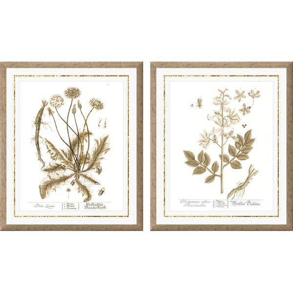 Botanical Gold Leaf Framed Graphic Art by PTM