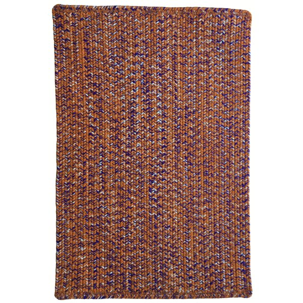 One-of-a-Kind Aukerman Hand-Braided Orange/Purple Indoor/Outdoor Area Rug by Isabelline