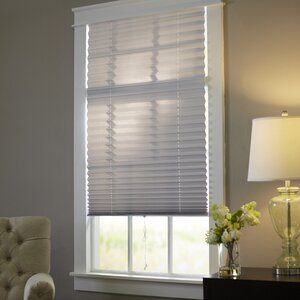 Wayfair Basics Room Darkening Pleated Shade