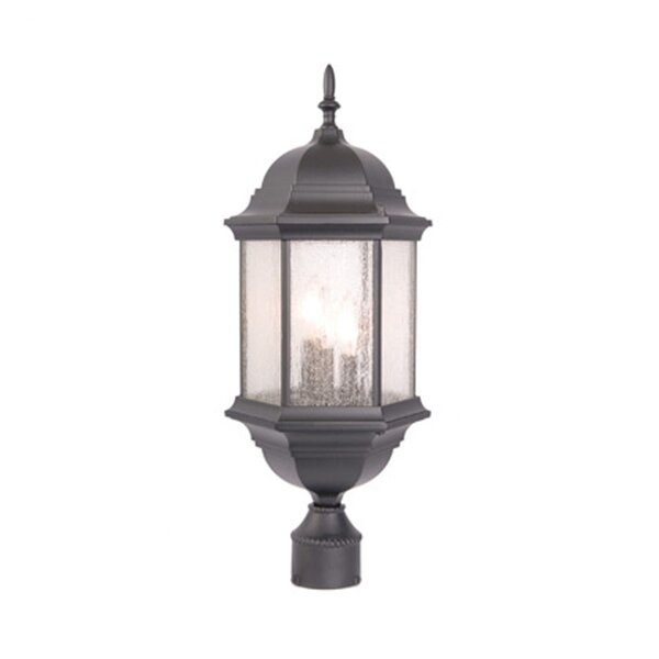 Pruitt Outdoor 3-Light Lantern Head by Charlton Home