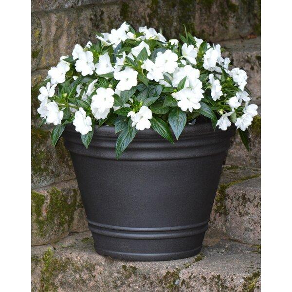Hockensmith Resin Pot Planter by Charlton Home