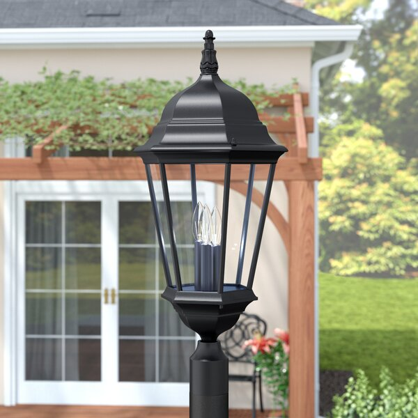 Bellver Outdoor 3-Light Lantern Head by Astoria Grand