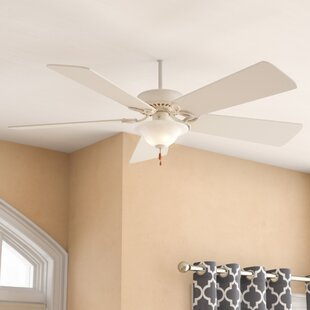 Kitchen ceiling fan with light wayfair save aloadofball Image collections