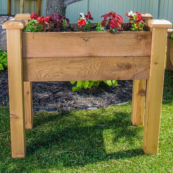 3 ft x 2 ft Cedar Raised Garden by Gronomics