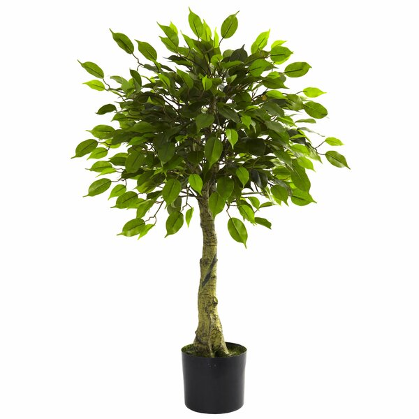 Faux Ficus Tree by Alcott Hill