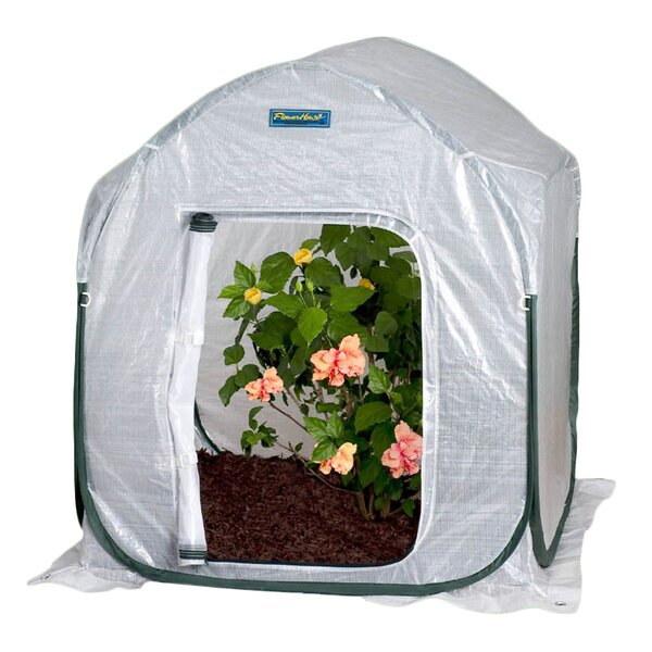 PlantHouse 4 Ft. W x 4 Ft. D Mini Greenhouse by Flowerhouse