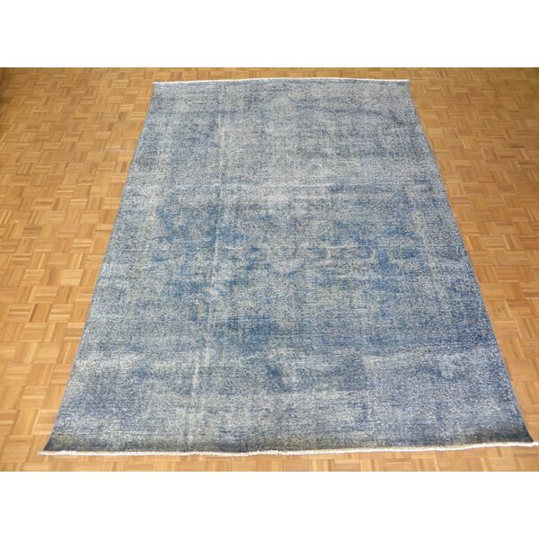 One-of-a-Kind Padro Hand-Knotted Wool Sky Blue Area Rug by Bloomsbury Market