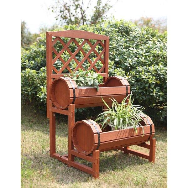 Chinese Fir Wood Raised Garden by Convenience Concepts