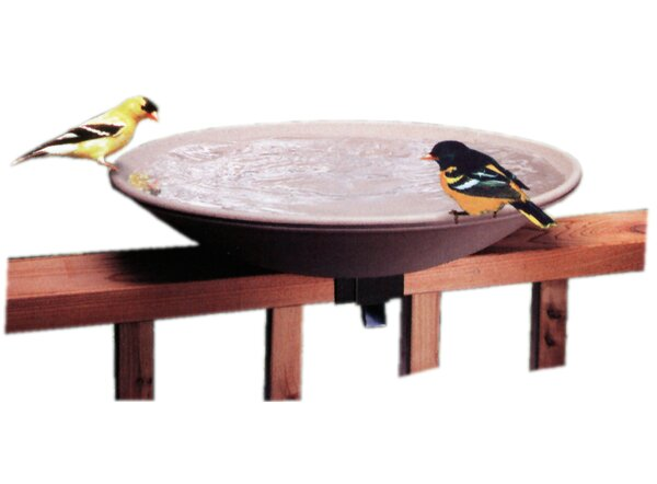 Ez Tilt Non-Heated Birdbath by Allied Precision Industries