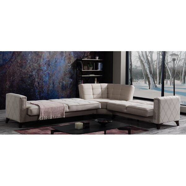 Ria Right Hand Facing Sleeper Sectional by Ivy Bronx