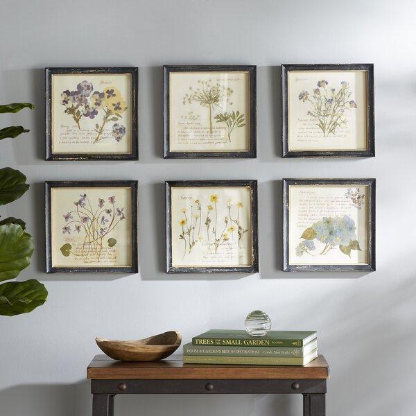 Pressed Flowers Framed Graphic Art Print by Birch Lane™