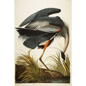 'Great Blue Heron' Graphic Art on Wrapped Canvas by Beachcrest Home