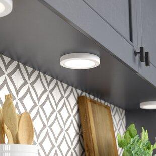 Affordable Price Adamsburg 1-Light LED Flush Mount By Ebern Designs