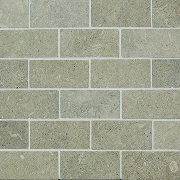 1 x 2  Limestone Mosaic Tile in Seagrass by Epoch Architectural Surfaces