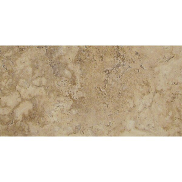 Lucerne 12 x 24 Porcelain Field Tile in Pilatus by Emser Tile