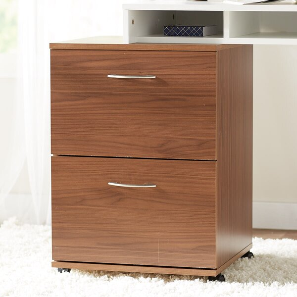 Aydan 2-Drawer Mobile Vertical Filing Cabinet by Zipcode Design