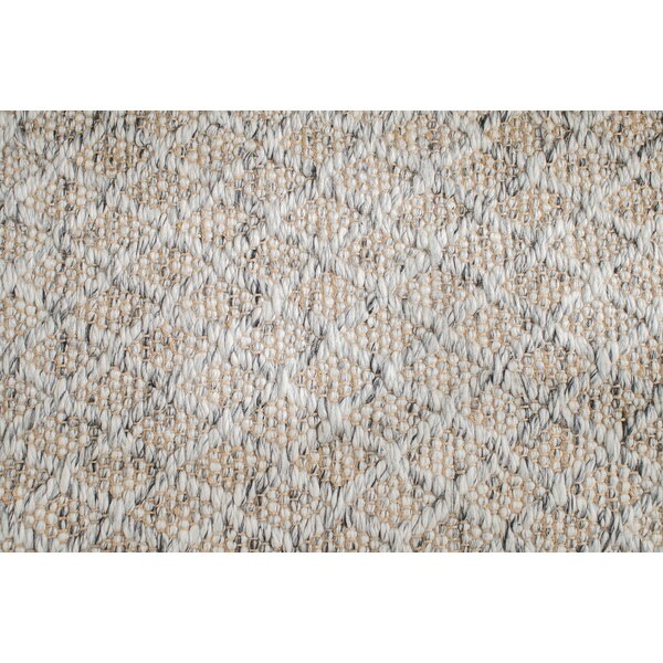 Soft Alternative Hand-Woven Gray Area Rug by Gracie Oaks