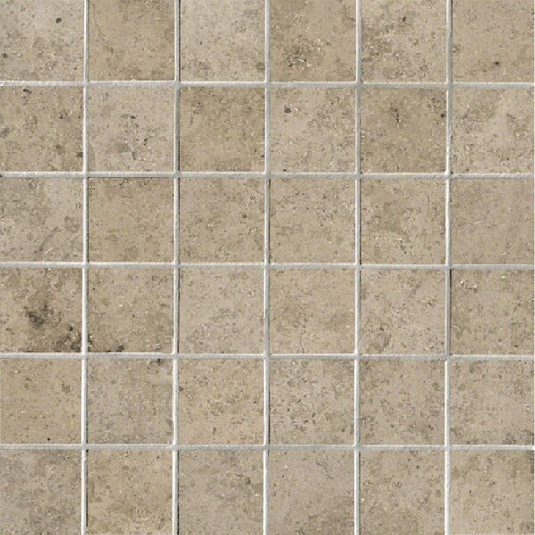 Everstone 2 x 2 Porcelain Mosaic Tile in Ever-Grau by Travis Tile Sales