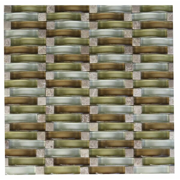 Frascati Glass Mosaic Tile in Brown by NovoTileStudio