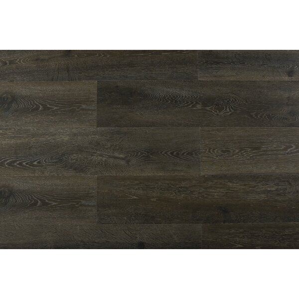 Augustus 7.71 x 72.83 x 12mm Oak Laminate Flooring in Ruby Tempest by Serradon