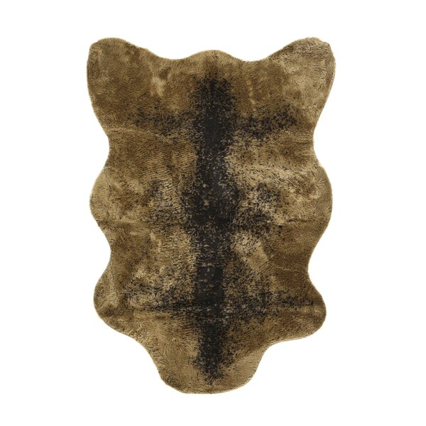 Animal Grizzly Bear Area Rug by Walk On Me