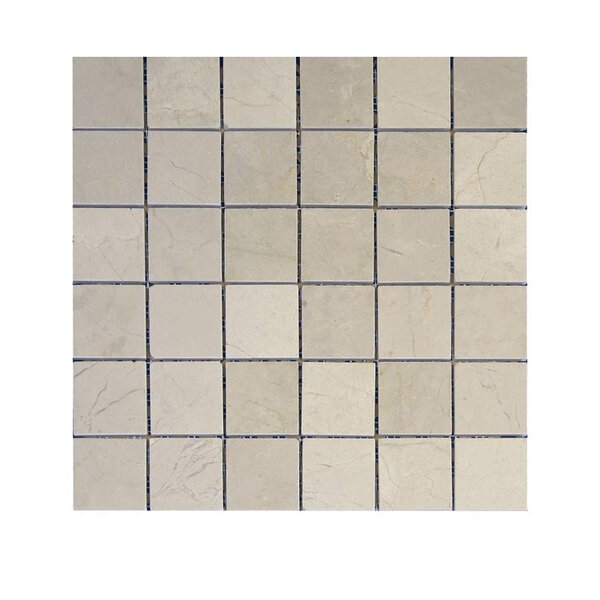 Polished 2 x 2 Natural Stone Mosaic Tile in Crema Marfil by QDI Surfaces