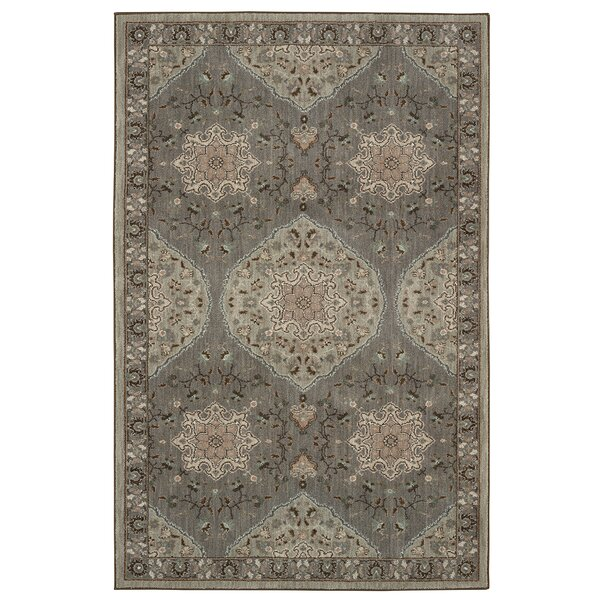 Worthville Farsa Gray Area Rug by Darby Home Co