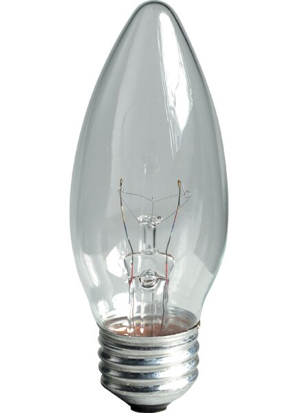 60W 120-Volt (2600K) Light Bulb (Pack of 2) by GE