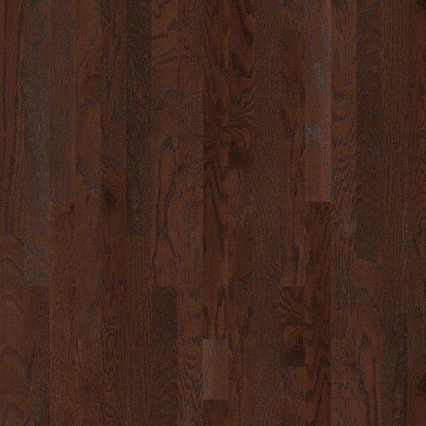 Lakeland 3-1/2 Engineered Red Oak Hardwood Flooring in Pooler by Shaw Floors
