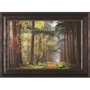 'Colors of The Forest' Framed Photographic Print by Darby Home Co