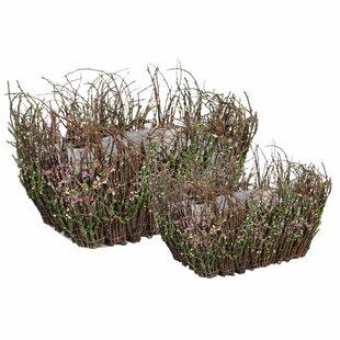 2 Piece Basket with Moss Decoration Set by ESSENTIAL DÉCOR & BEYOND, INC