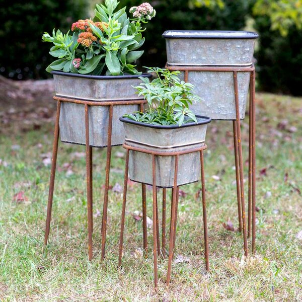 Cothern 3 Piece Square Metal Raised Garden Set by Williston Forge