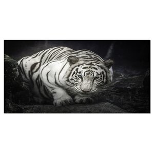 Tiger Animal Photographic Print on Wrapped Canvas by Design Art