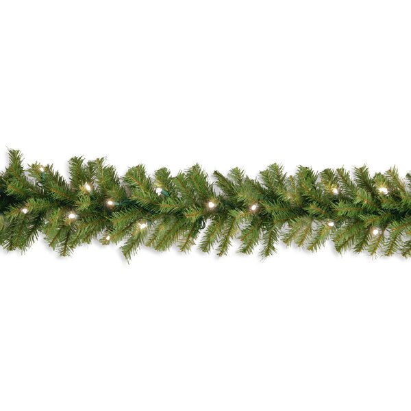 Wayfair Basics Fir Garland by Wayfair Basics™
