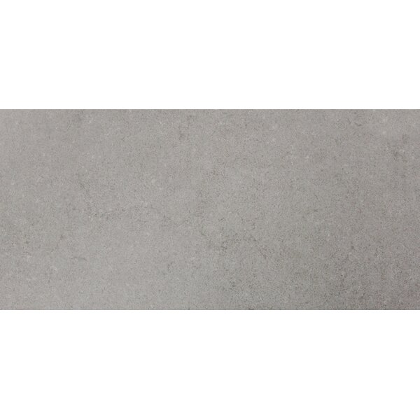 Gris 24 x 48 Porcelain Field Tile in Gray by MSI