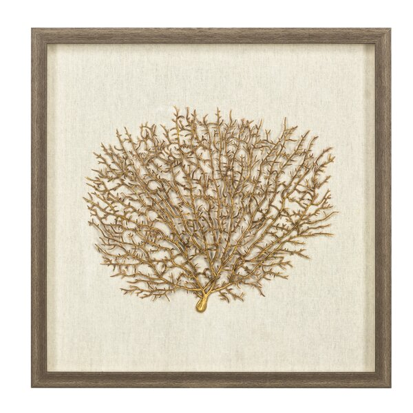 Sea Fan Wall Décor with Frame by Bay Isle Home