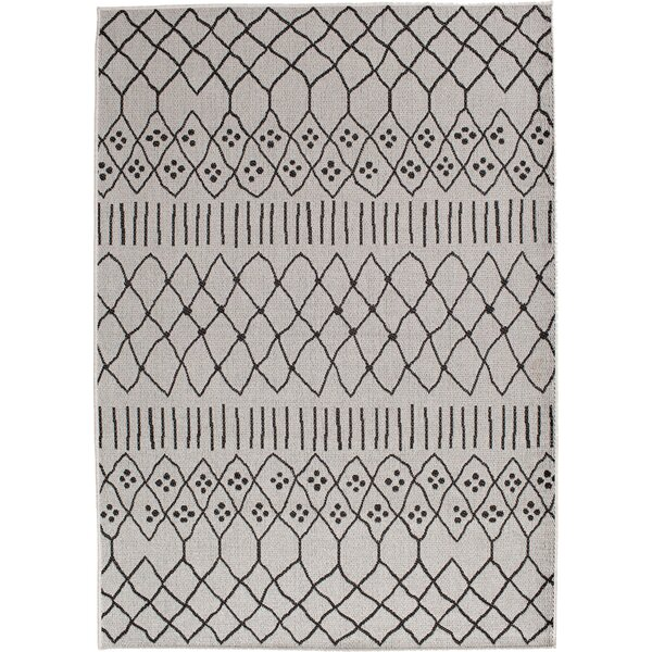 Rasen Gray Indoor/Outdoor Area Rug by Brayden Studio