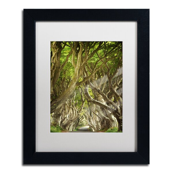 The Way It Is by Philippe Sainte-Laudy Matted Framed Photographic Print by Trademark Fine Art