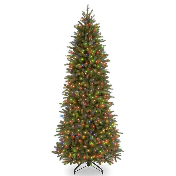 Feel Real Fraser Green Fir Trees Artificial Christmas Tree with Incandescent Multi-Colored Lights by Gracie Oaks