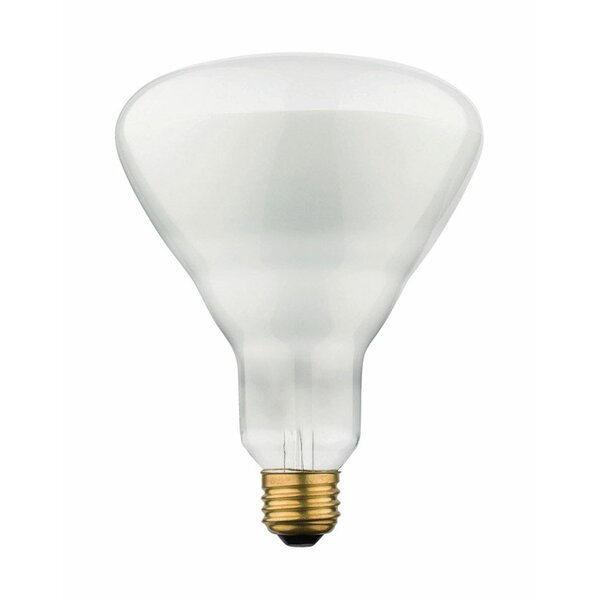 65W E26 Dimmable Incandescent Floodlight Light Bulb by Westinghouse Lighting