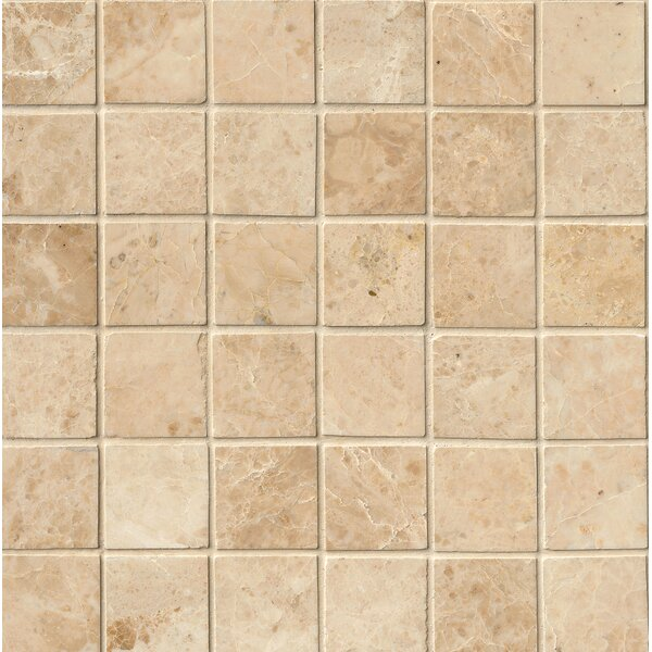 Crema Cappuccino Polished 2 x 2 Marble Mosaic Tile in Beige by MSI