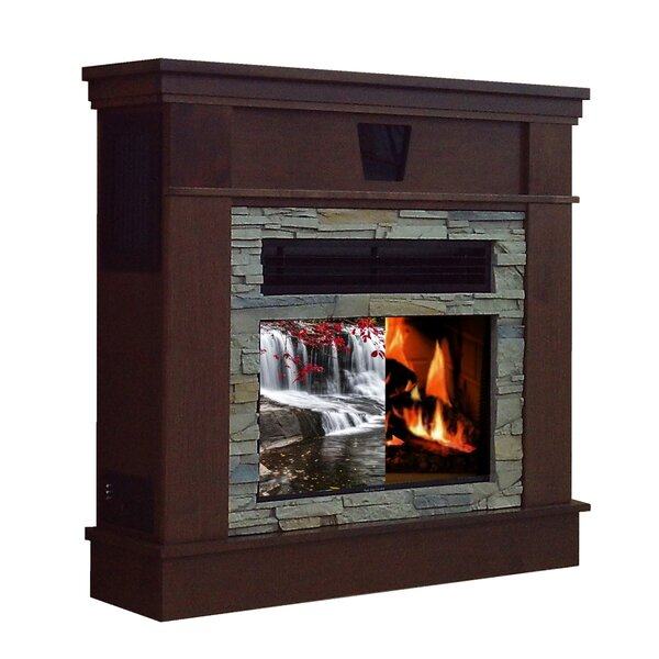 Bascobel Free Standing Fireplace by Darby Home Co