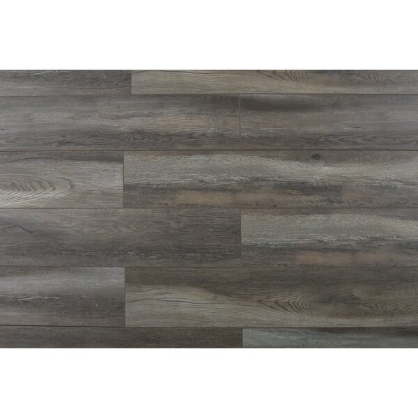 Abdiel Nakula 7.72 x 47.83 x 12.3mm Laminate Flooring in Gray by Serradon
