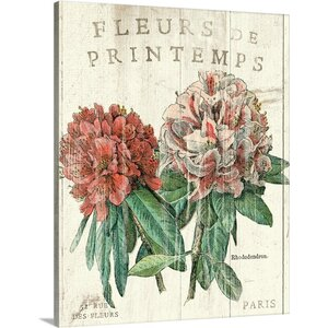 'Fleur de Printemps' by Sue Schlabach Graphic Art on Wrapped Canvas by Great Big Canvas